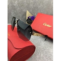 Cartier AAA Quality Goggles #300233