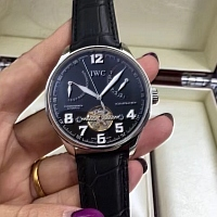IWC Quality Watches #316999