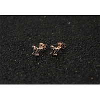 Louis Vuitton LV Earrings #366858