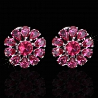 Bvlgari AAA Quality Earrings #399268