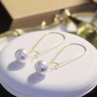 Christian Dior AAA Quality Earring #492865