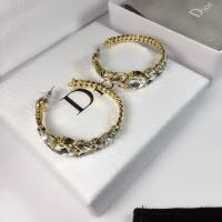 Christian Dior Earrings #505933