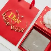 Christian Dior Earrings #506005