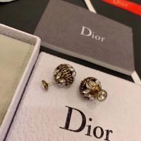 Christian Dior Earrings #506008