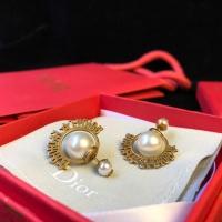 Christian Dior Earrings #506059