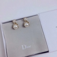Christian Dior Earrings #506163