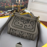 Dolce & Gabbana AAA Quality Handbags #530965