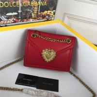 Dolce & Gabbana D&G AAA Quality Messenger Bags #530998