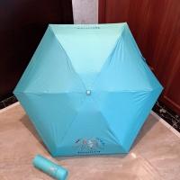 Tiffany Umbrella #856303