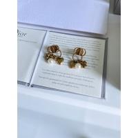 Christian Dior Earrings #861084