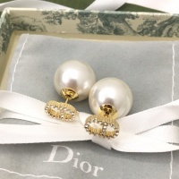 Christian Dior Earrings #861087