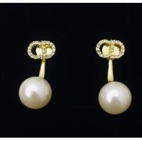 Christian Dior Earrings #861093