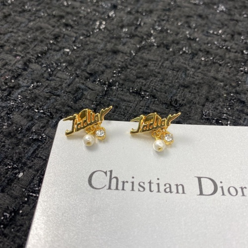 Christian Dior Earrings #875365