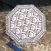 Christian Dior Umbrellas #880436