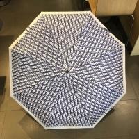 Christian Dior Umbrellas #885886
