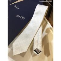 Christian Dior Necktie #887492