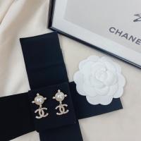 Christian Dior Earrings #890652