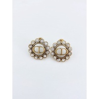 Christian Dior Earrings #891446