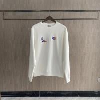 Christian Dior Hoodies Long Sleeved For Men #891919