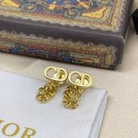 Christian Dior Earrings #892352