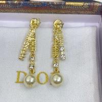 Christian Dior Earrings #892353