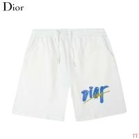 Christian Dior Pants For Men #892865