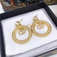 Christian Dior Earrings #911398