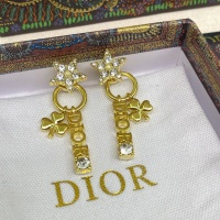 Christian Dior Earrings #912178