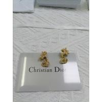 Christian Dior Earrings #923643